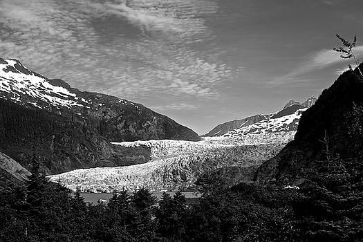 Denali National Park 6 by Dick Goodman