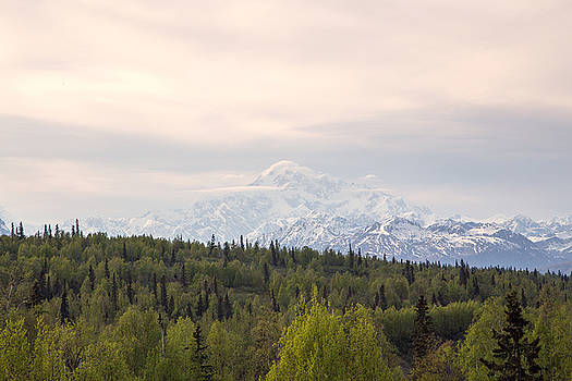 Allan Levin - Denali Produces Its Own Weather