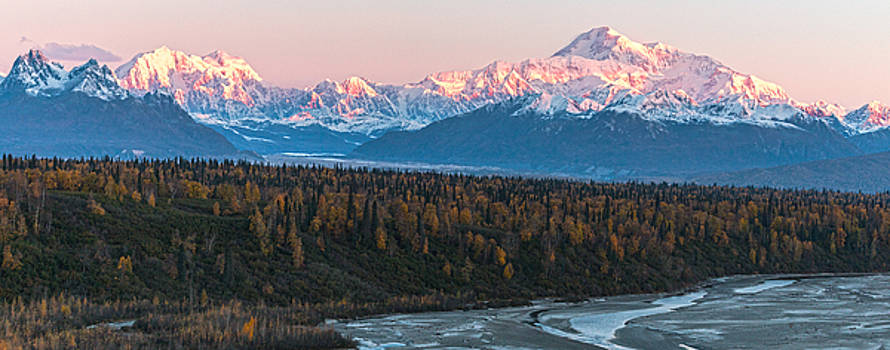 Denali Sunrise Alpenglow by Daryll Vispo
