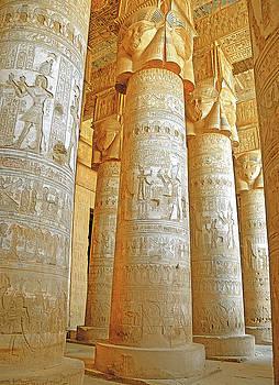 Dendera Temple by Nigel Fletcher-Jones