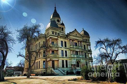 Denton Courthouse by Diana Mary Sharpton