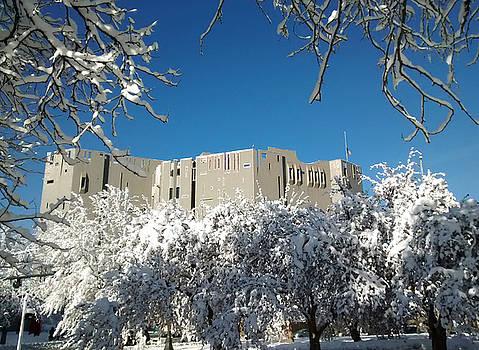 Denver Art Museum After Blizzard by Marilyn Hunt
