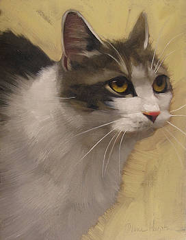 Derby Cat by Diane Hoeptner