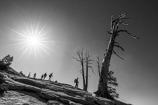 Descent from Sentinel Dome by Davorin Mance