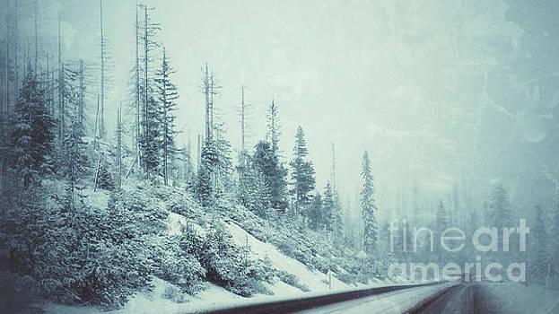 Lynn Palmer - Deschutes Blizzard