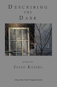 Don Mitchell - Describing the Dark book cover