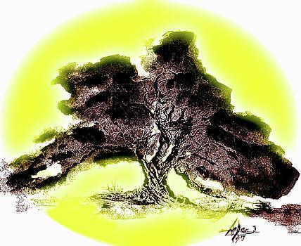 Desert - Tree of Life by AnDe Herbert