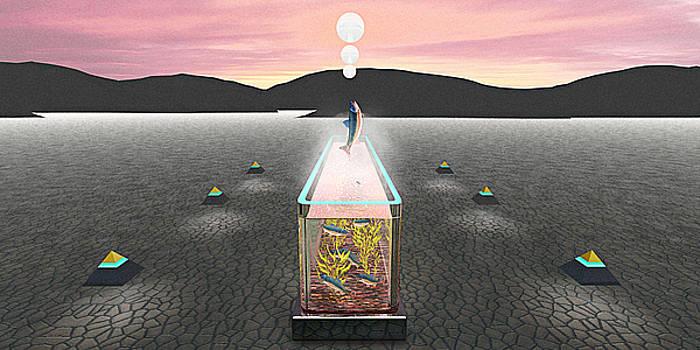 Desert Aquarium by Peter J Sucy