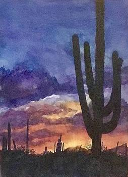 Desert at Dusk by Cheryl Wallace