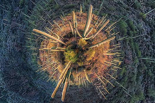 Desert Big Bang by Lynn Geoffroy
