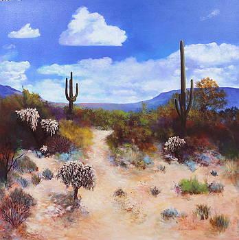 Desert Colors by M Diane Bonaparte