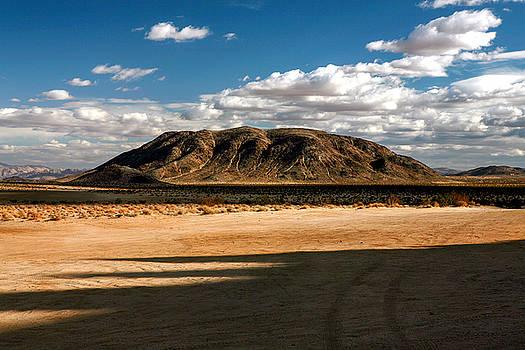 Desert Dream by Lon Casler Bixby
