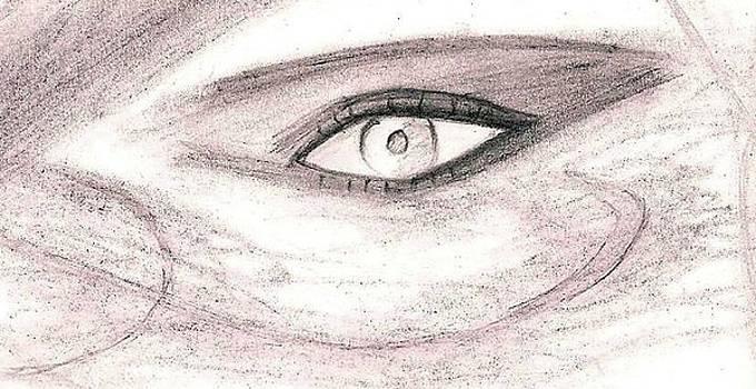 Desert Eye by Sarah Sarah