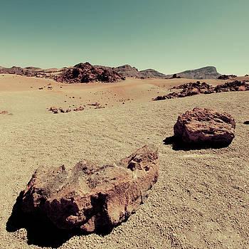Desert by Felix M Cobos