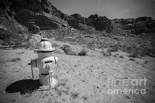 Desert Fire Hydrant by Daniel  Knighton