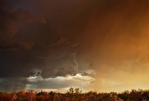 Desert Fire by James Menzies