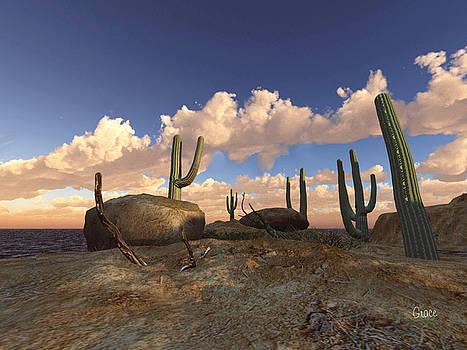 Desert Floor by Julie Grace