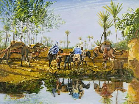 Desert Gold by Christopher Oakley