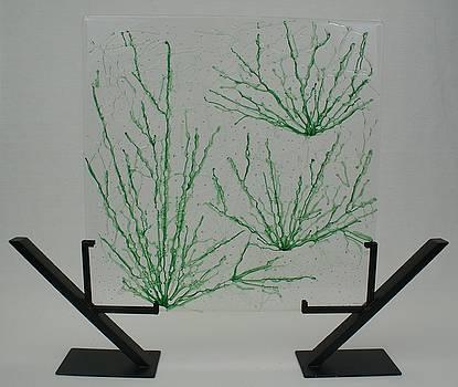 Desert Grass by Louis Copper