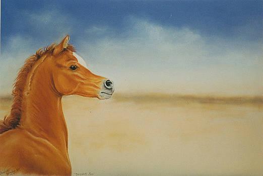 Desert Joy by Louise Green