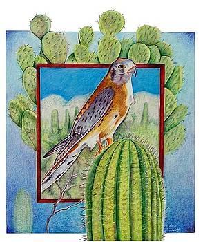 Desert Life by Barbara Goodsitt