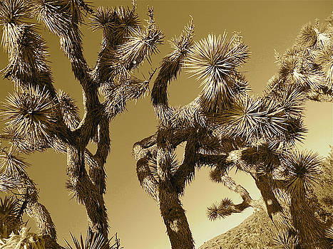 Desert Mimers by Gem S Visionary