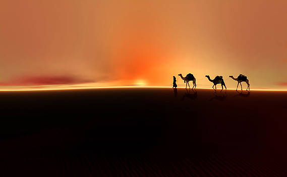 Desert mirage by Valerie Anne Kelly