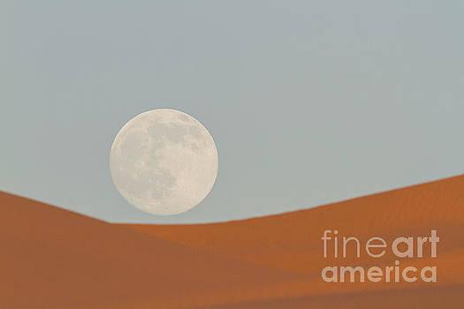 Desert Moon 1 by Daniel Knighton