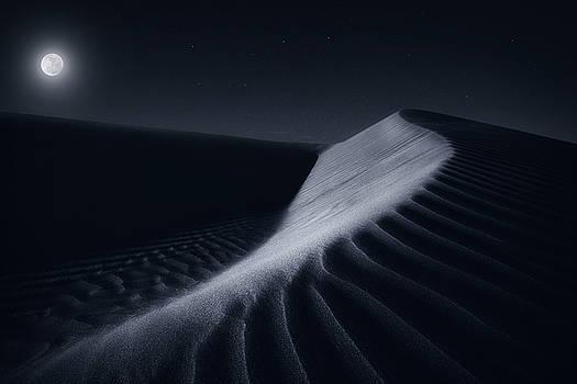 Desert Moon by Morteza Safataj
