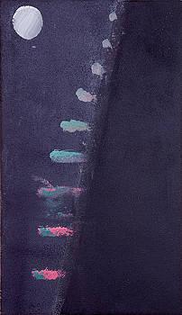 Desert Moonlight Walk by Benjamin Esfandi