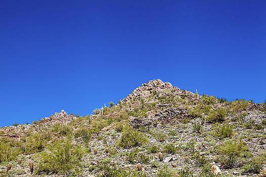 Desert Mountaintop by Ed Cilley