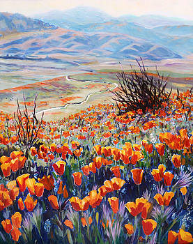 Desert Poppies by Margaret  Plumb