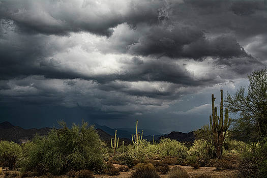 Desert Rain on the Horizon by Saija Lehtonen