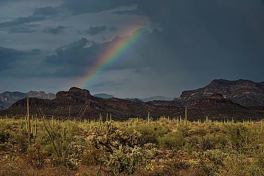 Desert Rainbow  by Saija Lehtonen