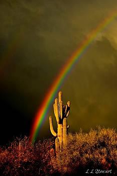 Desert Revelation by L L Stewart