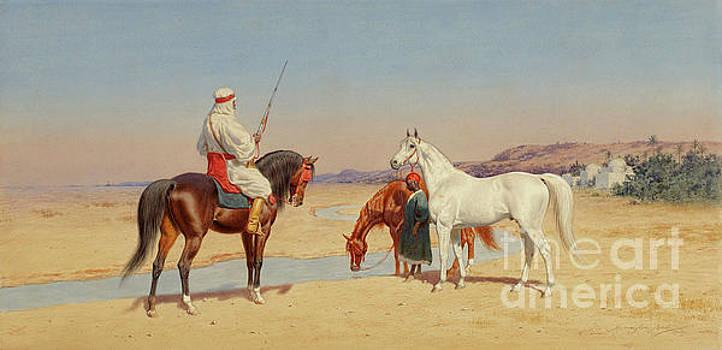Desert Rider by John Harrington Bird