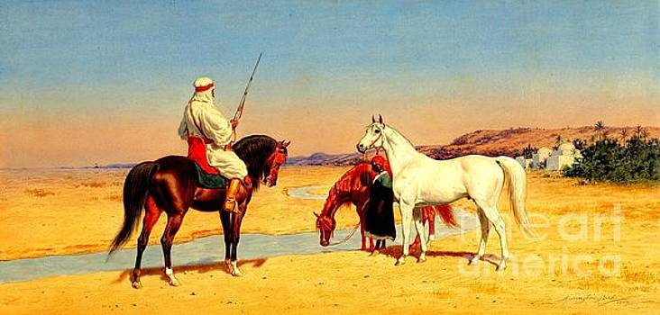 Peter Gumaer Ogden - Desert Rider