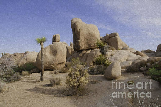 Desert Scenery by Bill Baer