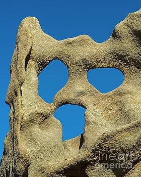 Desert Scream by Mike Dawson