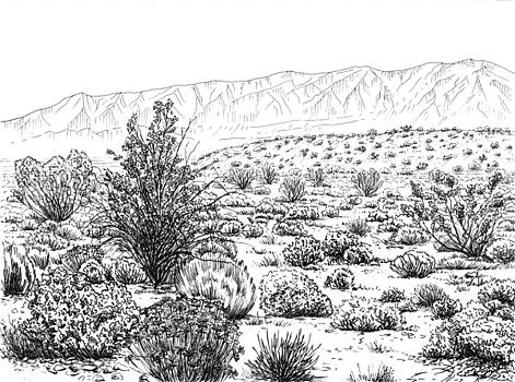 Desert Scrub Ecosystem by Logan Parsons
