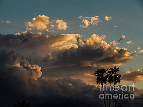 Desert Sky 2 by Chris Tarpening