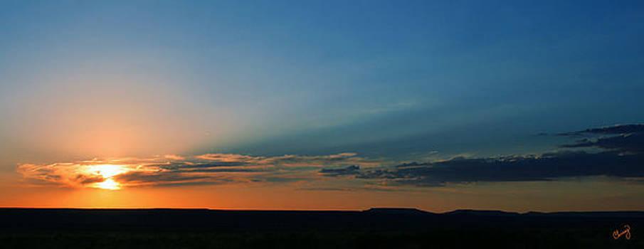 Desert Sky by Chrissy Skeltis