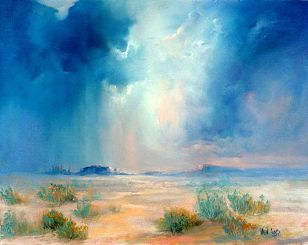 Desert Storm by Sally Seago