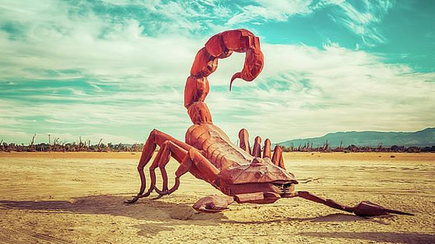Desert Stung by Wayne Stadler
