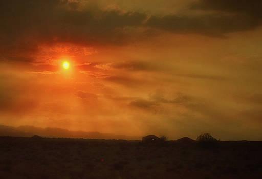 Desert Sunset 015 by George Bostian