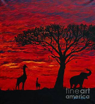 Barbara Griffin - Desert Sunset 3