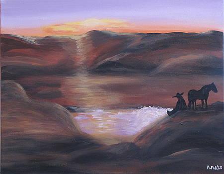 Desert Sunset by Aleta Parks