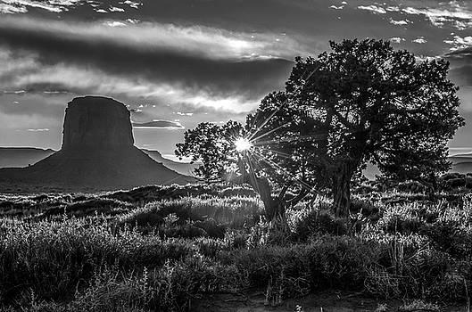 Desert Sunset Black and White by Eric Albright