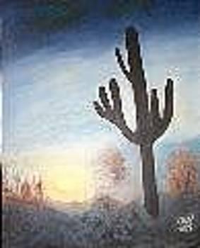 Desert Sunset by Elizabeth A Gawronski