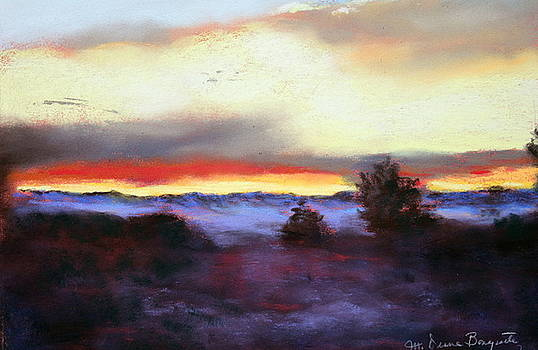 Desert Sunset I by M Diane Bonaparte